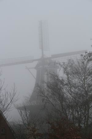 Resize_of_de_fortuin_in_de_mist_van