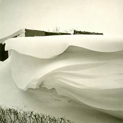 Resize_of_sneeuwmidwoldaniesoordlaa