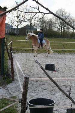 Resize_of_ruiter_met_paard_in_de_ba
