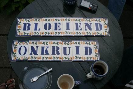 Resize_of_bloeiend_onkruid_als_cade