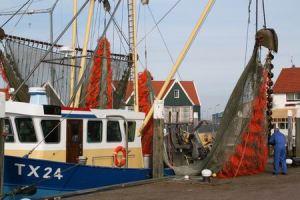Resize of Texel Oudeschild 03 15022011