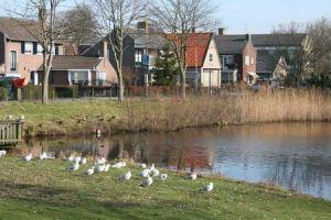 Resize of Texel Den Burg zicht op Keesomlaan 03 15022011