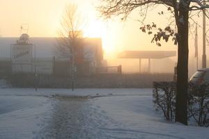Winterzon op Be-Jo 03012010 verkl