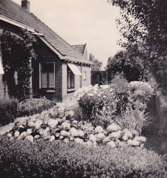 LJL Onze bloeiende tuin 1949