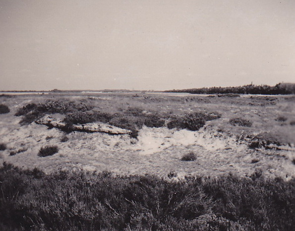 LJL Heide bij Borger  1949